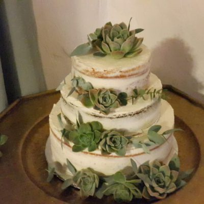 Semi-naked carrot cake with succulents as decor